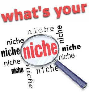 what is your marketing niche?